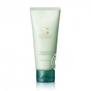 Jayjun Anti Dust Fresh Foam Cleanser