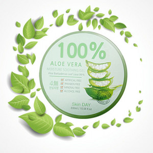 Skinday Aloe Vera Moisture Soothing Gel 100%