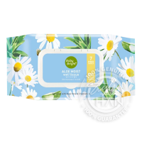 Baby Bright Aloe Moist Wet Tissue (100 Sheets)